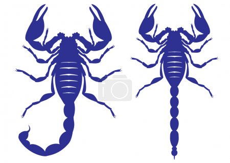 Illustration for Set of vector silhouettes of a scorpion - Royalty Free Image