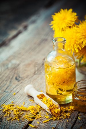 Bottle of dandelion tincture or oil, flower bunch and honey