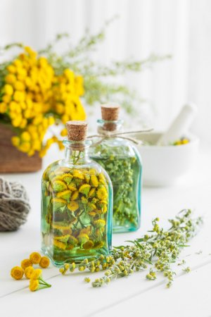 Tincture bottles of tansy and tarragon healthy herbs