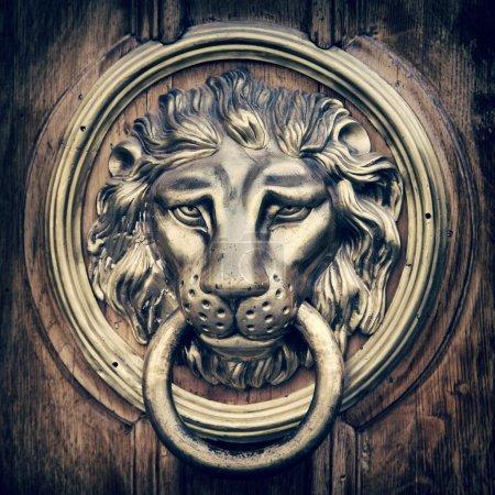 Door knocker, handle - lion head. Vintage stylized...