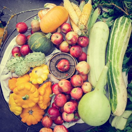 Photo pour Tas de fruits et légumes récoltés, nature morte d'automne, vue sur le dessus - image libre de droit