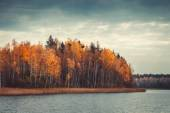Beautiful forest with yellow forest and  lake, autumn landscape