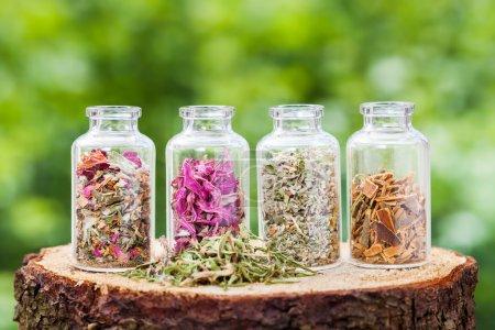Photo pour Bouteilles en verre avec des herbes curatives sur souche en bois sur fond vert, phytothérapie . - image libre de droit