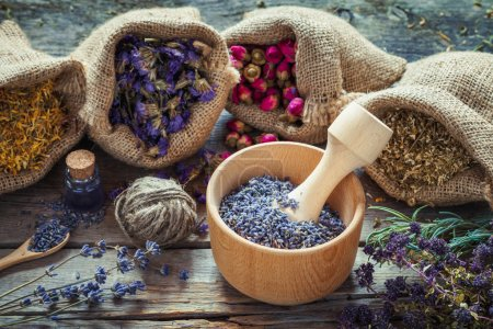 Healing herbs in hessian bags, wooden mortar with dry lavender