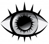 Vector black and white illustration The human eye on a white background