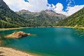 Pian Palu jezero - Trentino, Itálie