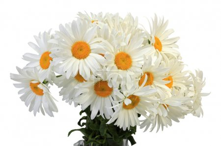 A bouquet of fresh flowers (isolated)...