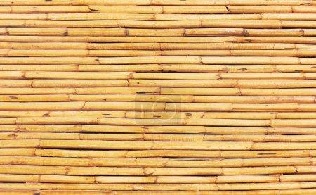 Photo pour Texture bois avec motifs naturels - image libre de droit