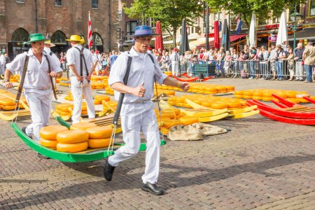 Carriers walking with many cheeses in the famous Alkmaar market, The Netherlands