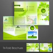 Stylish trifold for Fitness Club