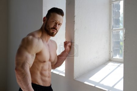 Photo for Muscular bearded male posing near window in natural day light. - Royalty Free Image