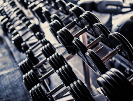 Two rows of iron dumbbells