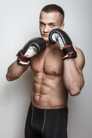 Photo for Muscular fighter in boxing gloves on white background - Royalty Free Image