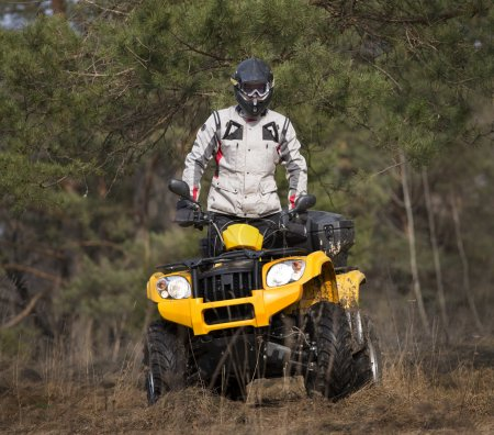 Curiously ATV 4x4 rider