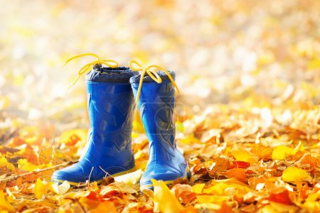 rubber boots on the autumn leaves