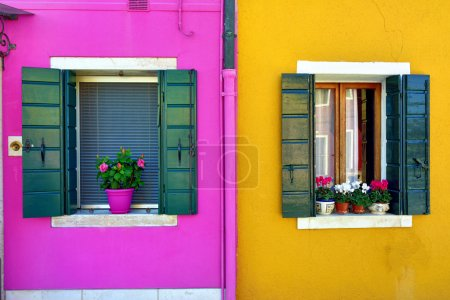 Photo for Burano island, Venice. Decorated window with bouquet of flowers. Colorful houses island and landmark of Veneto region, Italy - Royalty Free Image