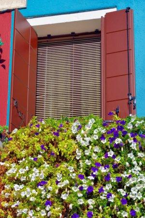 Burano island window