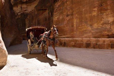 Horse carriage in Siq canyon, Petra, Jordan