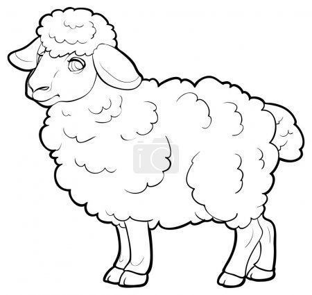 Illustration pour Agneau de dessin animé. illustration vectorielle - image libre de droit