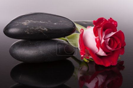 Spa stone and rose