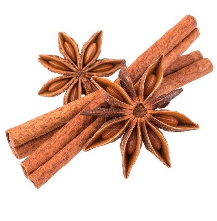 bâton de cannelle et épice d'anis étoilé