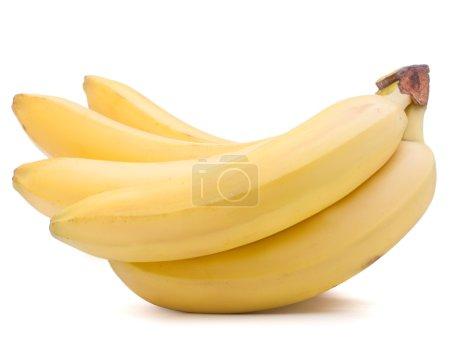 Foto de Manojo de plátanos frescos aislado en recorte de fondo blanco - Imagen libre de derechos