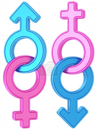 Photo for Set of male and female gender symbols chained together on white background. High resolution 3D image - Royalty Free Image