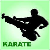 Karate high kick in jump. MARTIAL ARTS.