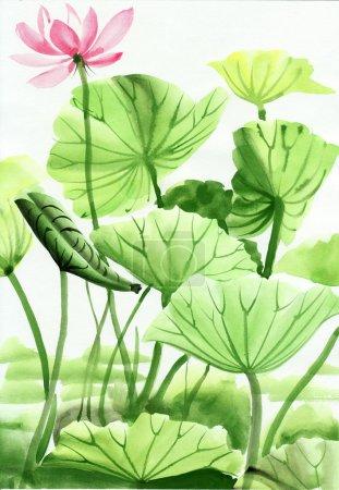 Photo pour Peinture aquarelle de fleurs de Lotus, œuvres d'art originales, style asiatique - image libre de droit