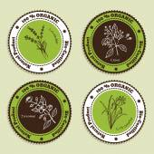 Set of Natural Organic Product badges Labels for Essential Oils Lavender Citronella Jasmine Clove
