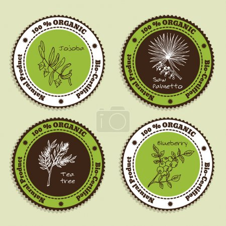Illustration for Set of Natural Organic Product badges. Collection of Herbs. Labels for Essential Oils and Natural Supplements. Saw palmetto, Tea tree, Blueberry, Jojoba - Royalty Free Image