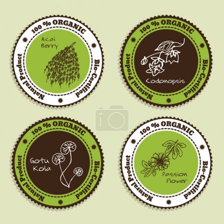 Illustration for Set of Natural Organic Product badges. Collection of Herbs. Natural Supplements. Gotu Kola, Acai Berry, Codonopsis, Passion Flower - Royalty Free Image