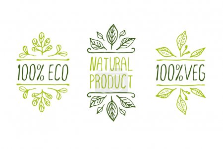 Hand-sketched typographic elements. Natural produc...