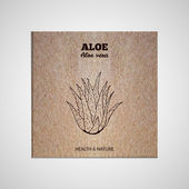 Herbs and Spices Collection - Aloe Vera