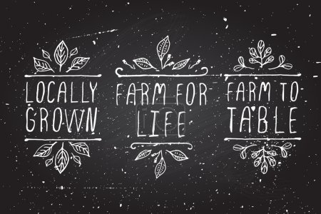 Illustration for Hand-sketched typographic elements. Farm product labels on chalkboard background. Locally grown. Farm for life. Farm to table - Royalty Free Image