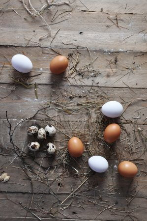 A goose egg, hen egg and a quail egg on a wooden background