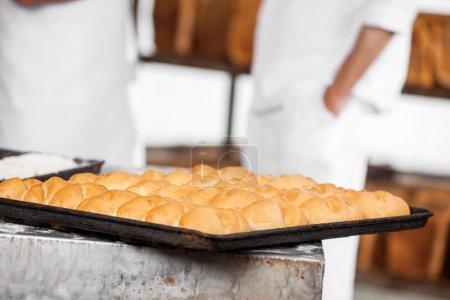 Photo pour Gros plan de pains sur plaque de cuisson à la boulangerie - image libre de droit