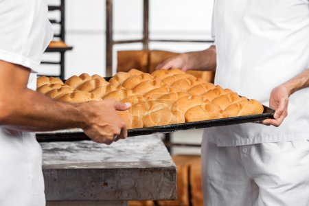 Midsection Of Bakers Carrying Breads In Tray