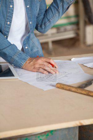 Female Carpenter With Blueprint At Table