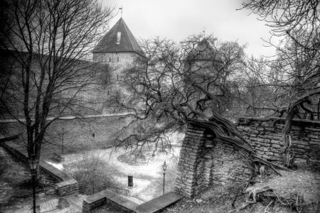 Photo pour Vieilles rues des villes européennes. Chalets confortables. Tallinn la capitale de l'Estonie sur la mer Baltique . - image libre de droit