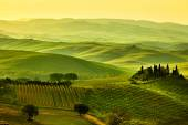 Landscape in Tuscany hills