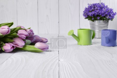 Pink tulips with green watering can