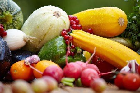 Fresh organic vegetables  on wood table