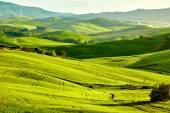 Tuscany hills nature