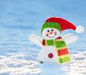 Sněhulák na sněhu
