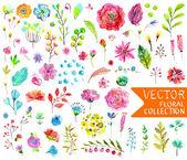 """Постер, картина, фотообои """"Коллекция акварелью цветы для различных дизайн"""""""