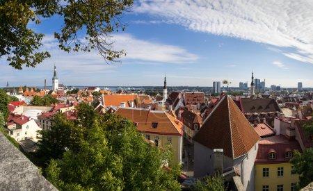 Panorama of Old Tallinn