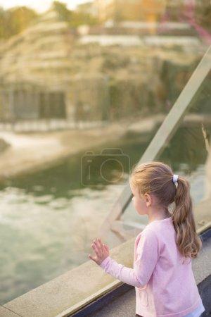 Beautiful girl in zoo
