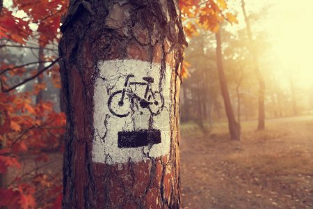 Photo for Sign bike path in the misty autumn colored forest - Royalty Free Image