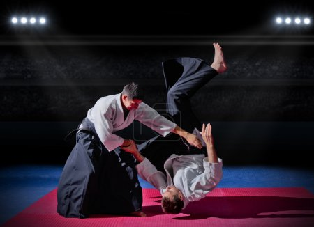 Fight between two martial arts fighters